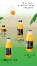 bouteilles-eco-presse-agrumes-manuel